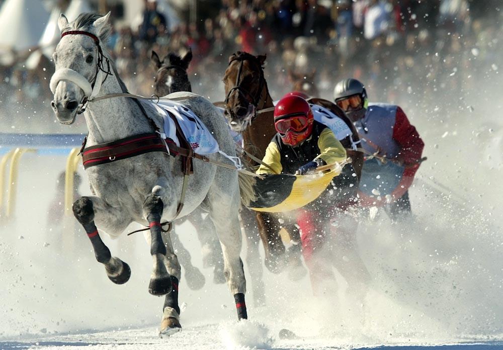 Trommelnde Hufe, stiebender Schnee - Attraktion Skikjoering