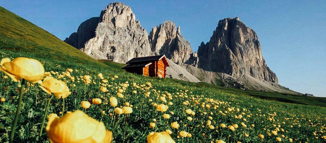 Paesaggio-montano-della-Val-di-Fassa-in-estate_imagelarge
